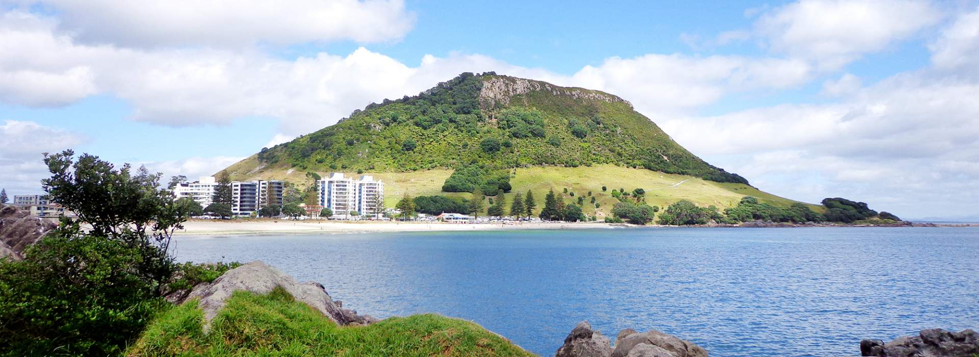 Tesol Course Also Known As Tefl Bay Learning Academy New Zealand
